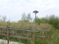 Schwwalbenturm in den Seewiesen