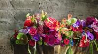 Farbenprächiges Blumenarrangement