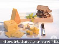 Milchseminar Käse
