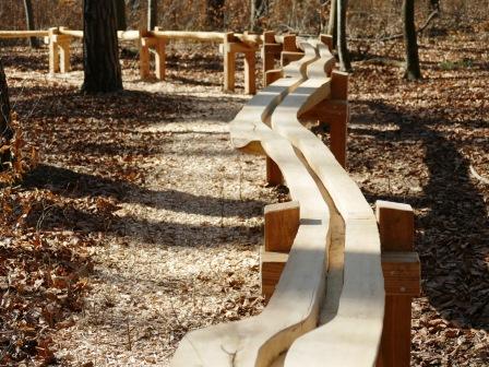Streckenabschnitt der Kugelbahn durch den Wald