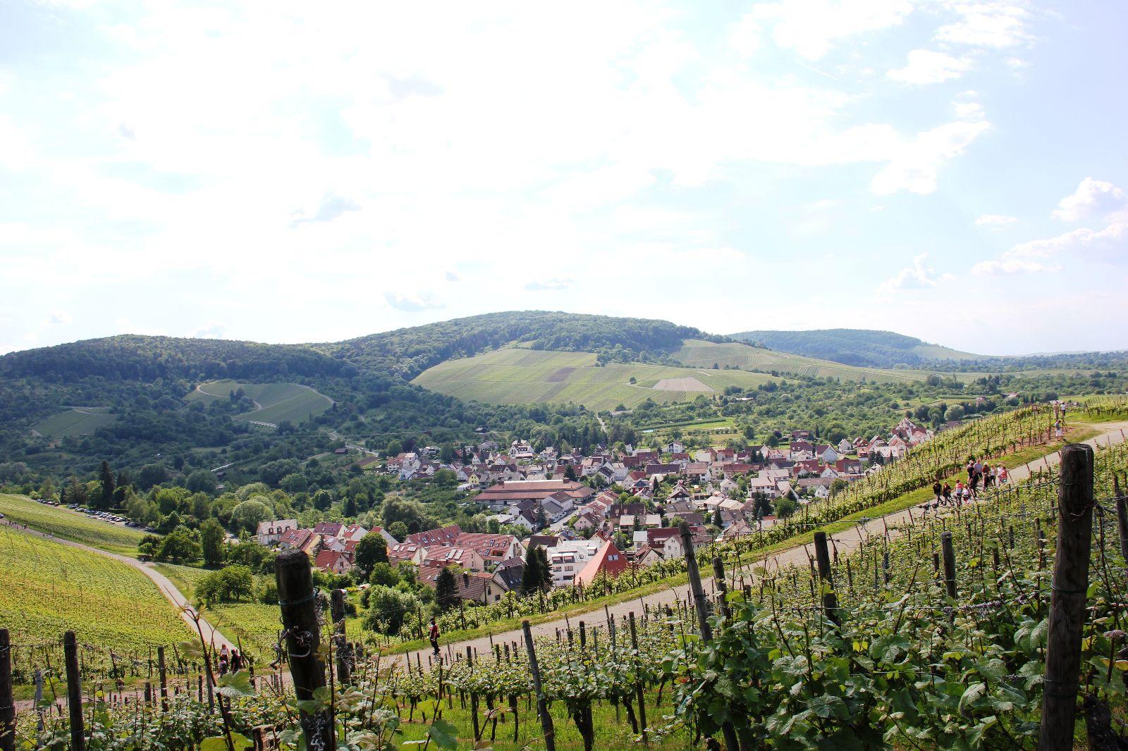 Blick von Stetten nach Rommelshausen